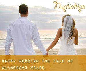 Barry wedding (The Vale of Glamorgan, Wales)